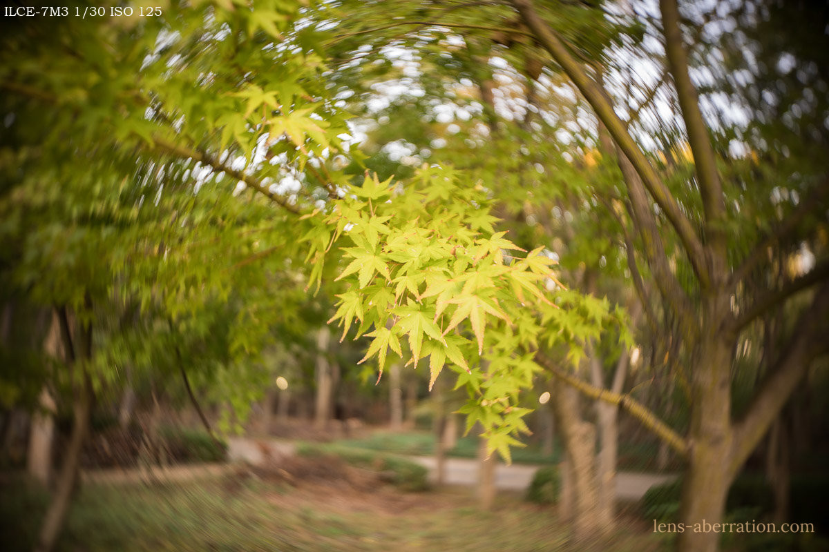 Lensbaby Trio28 (Twist)