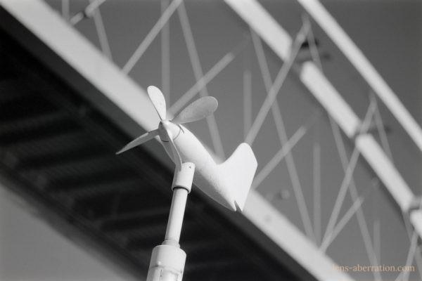Sonnar 100mm F3.5/Neopan Acros 100